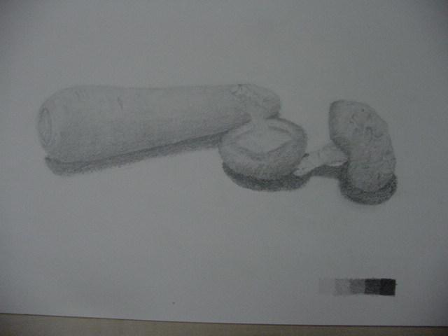 人参と椎茸