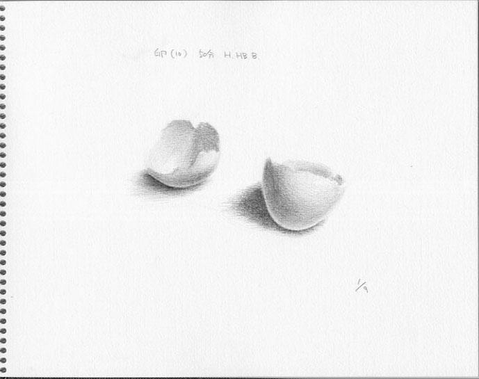 卵(10)