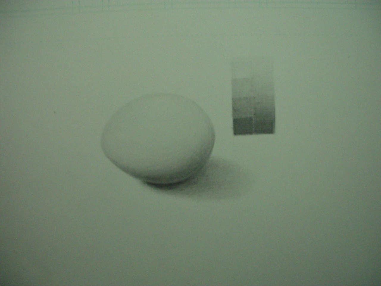 生卵(6)
