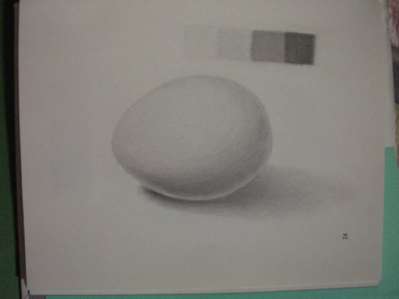 生卵(10)