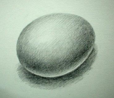 卵(1.1)