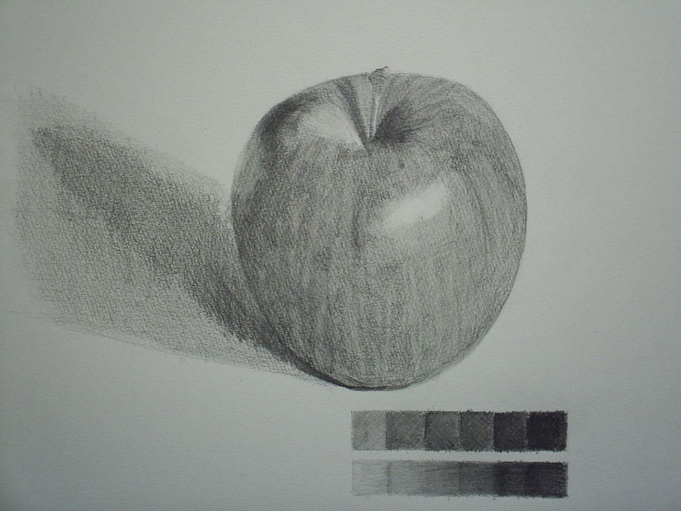 りんご2回目