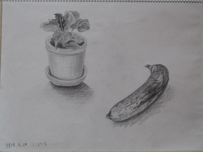 植木鉢とバナナ