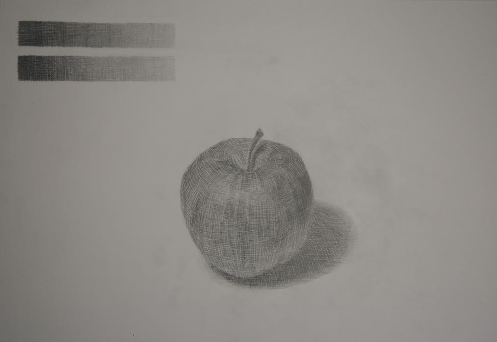 りんご(種類不明)
