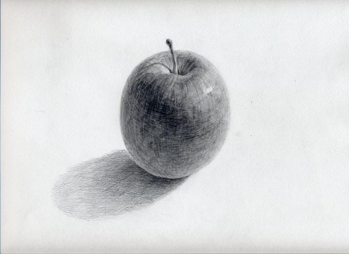 久々のりんご