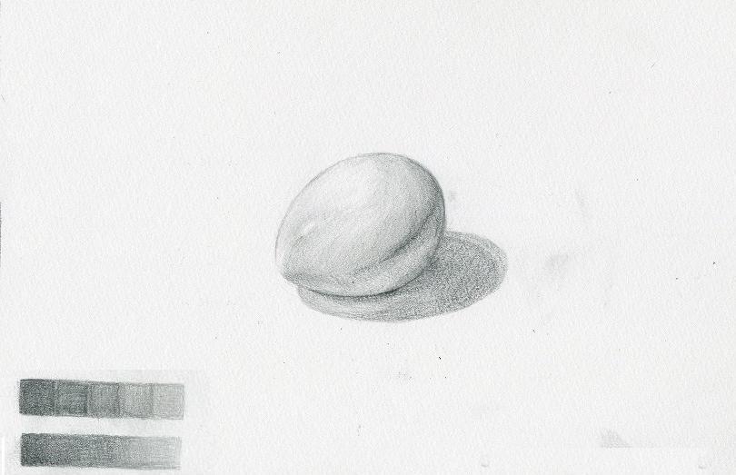 白いタマゴ
