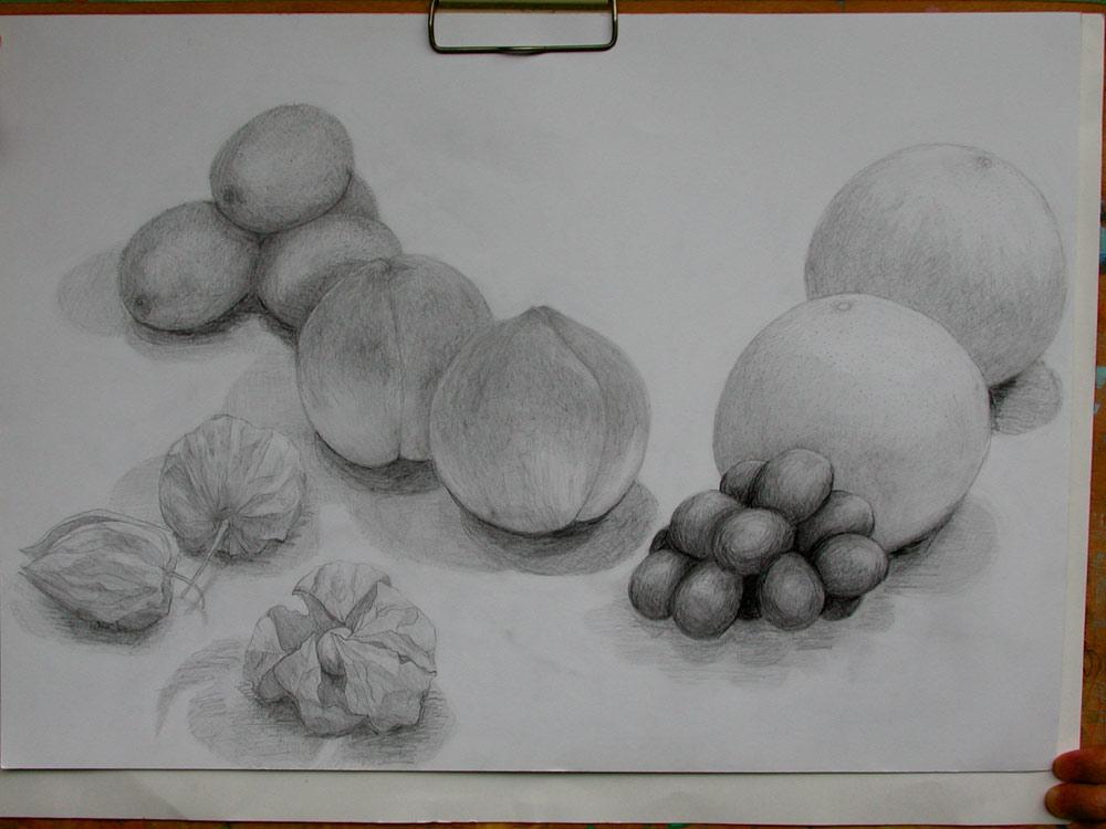 葡萄、グレープフルーツ、桃、キウィフルーツ,ほおずき