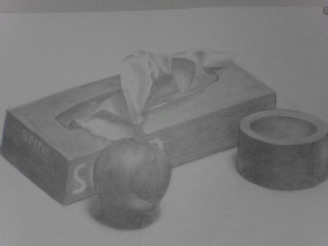 ティッシュ箱・玉葱・ガムテープ