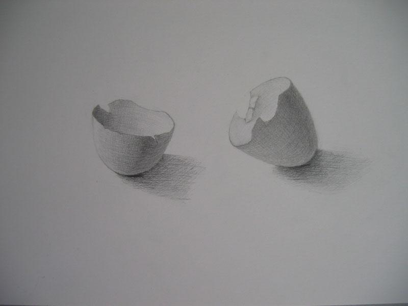 たまごの殻