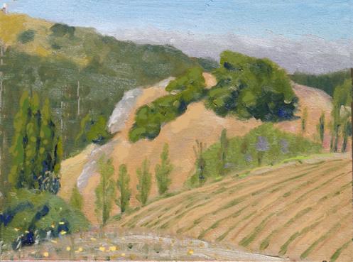 クーパティーノの山とぶどう畑