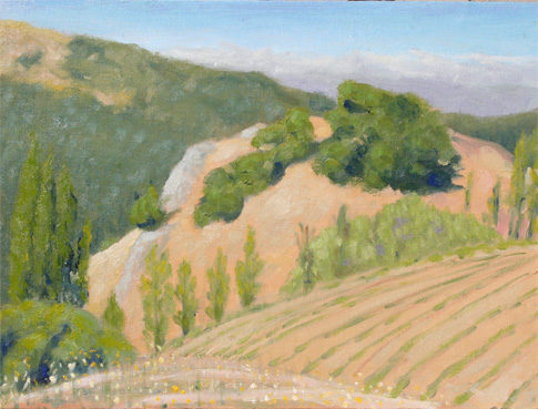 Re: クーパティーノの山とぶどう畑