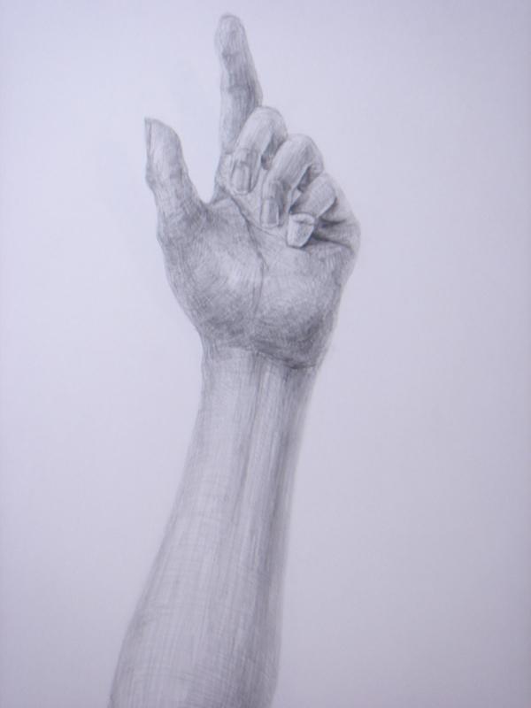 手 その3