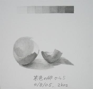 茶色の卵の殻5