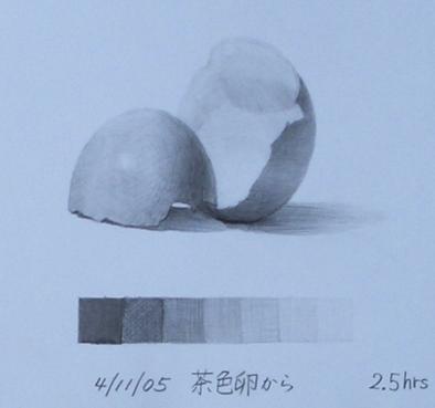 茶色の卵の殻6