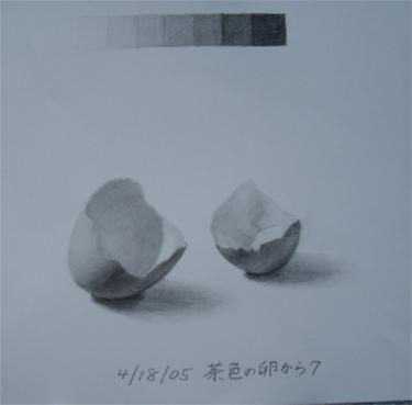 茶色の卵の殻7