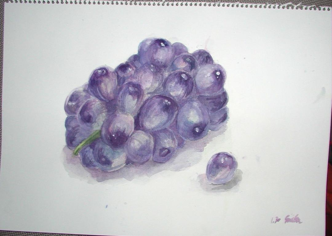 水彩・葡萄