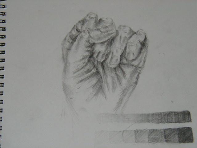 左手の握りこぶし